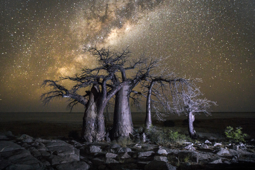 Фото: Ботсвана