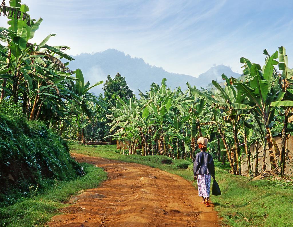 Фото: Уганда