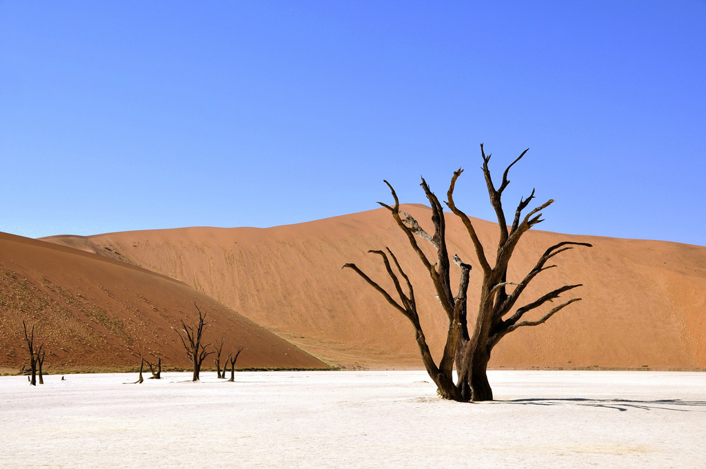Фото: Деад Фляй, Намибия