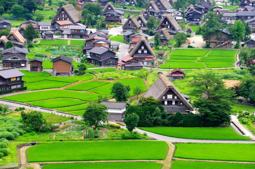 Фото: Деревня Сиракава-го