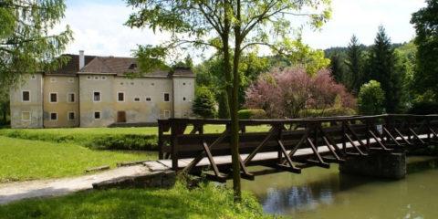 brodzyansky-castle