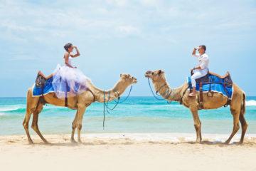 camel-ride-on-wedding-day
