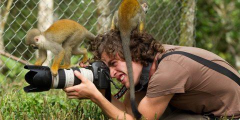 Фото: Лучшие места для наблюдения за дикими животными