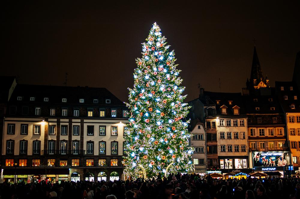 Фото: Рождественская ёлка