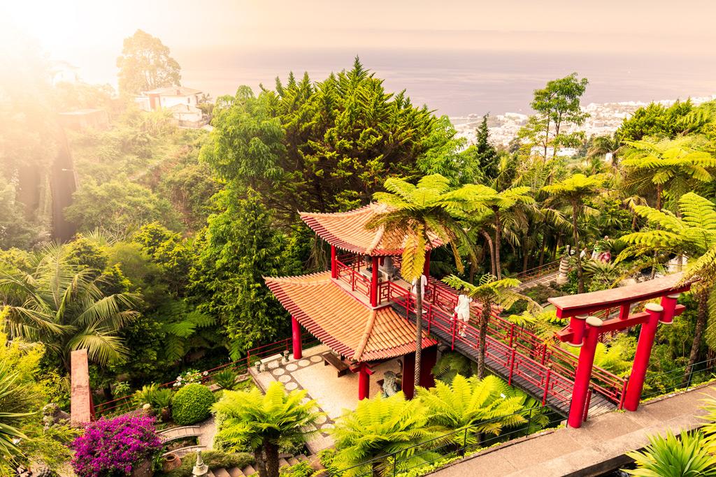 lovely-park-island-of-madeira