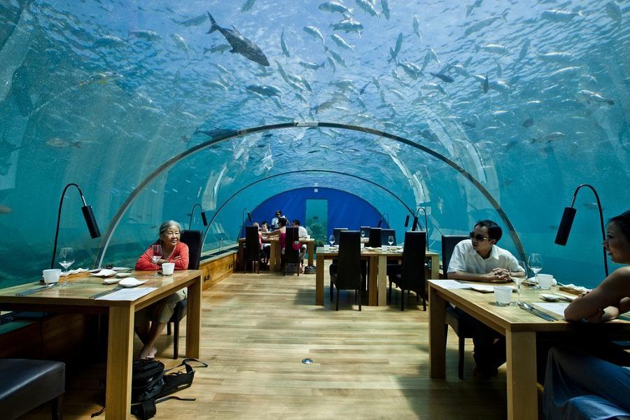 Фото: Подводный ресторан Итха