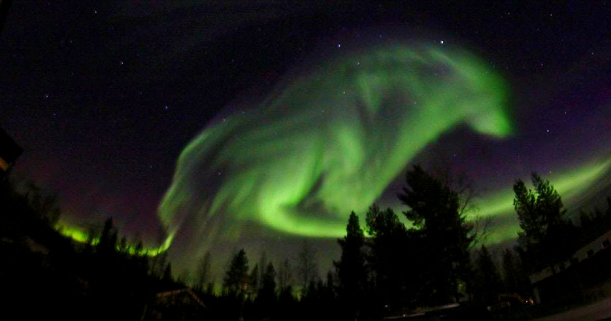 Фото: Северное сияние в Швеции