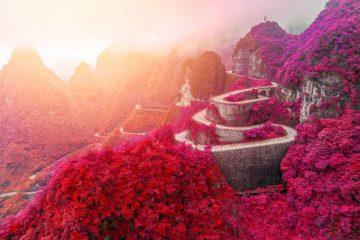 Фото: Национальный парк в Азии