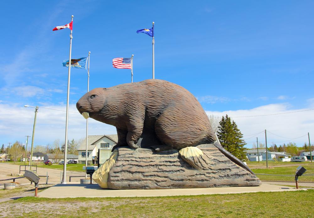 Фото: Национальный символ в Канаде