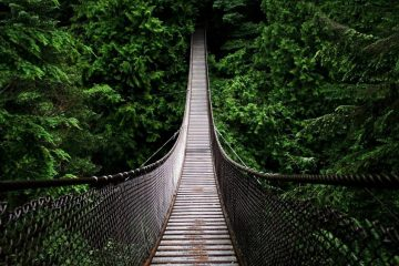 Фото: Мост