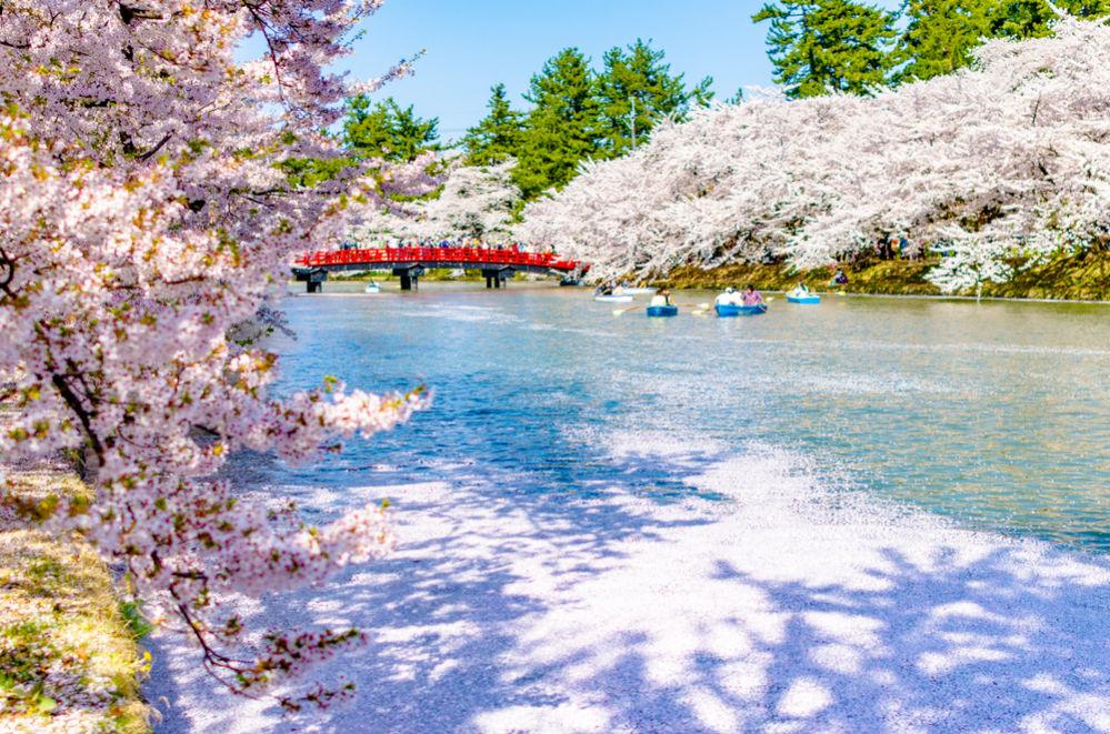 Фото: Регион Тохоку