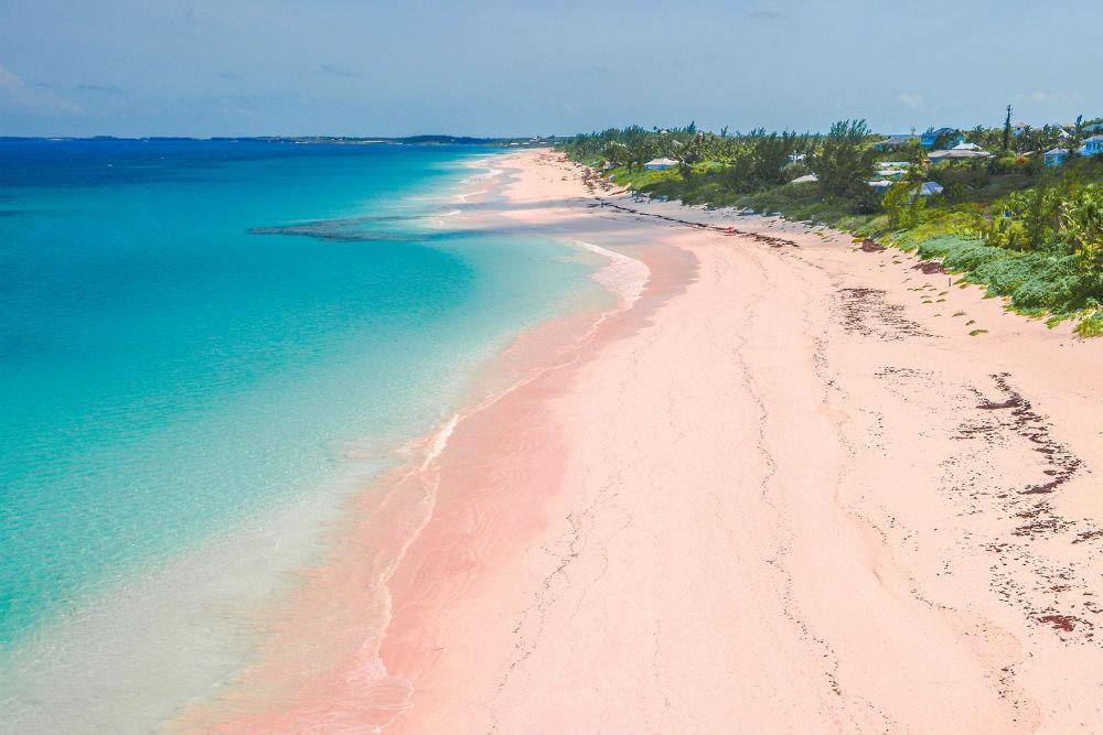 Фото: Pink Sands Beach