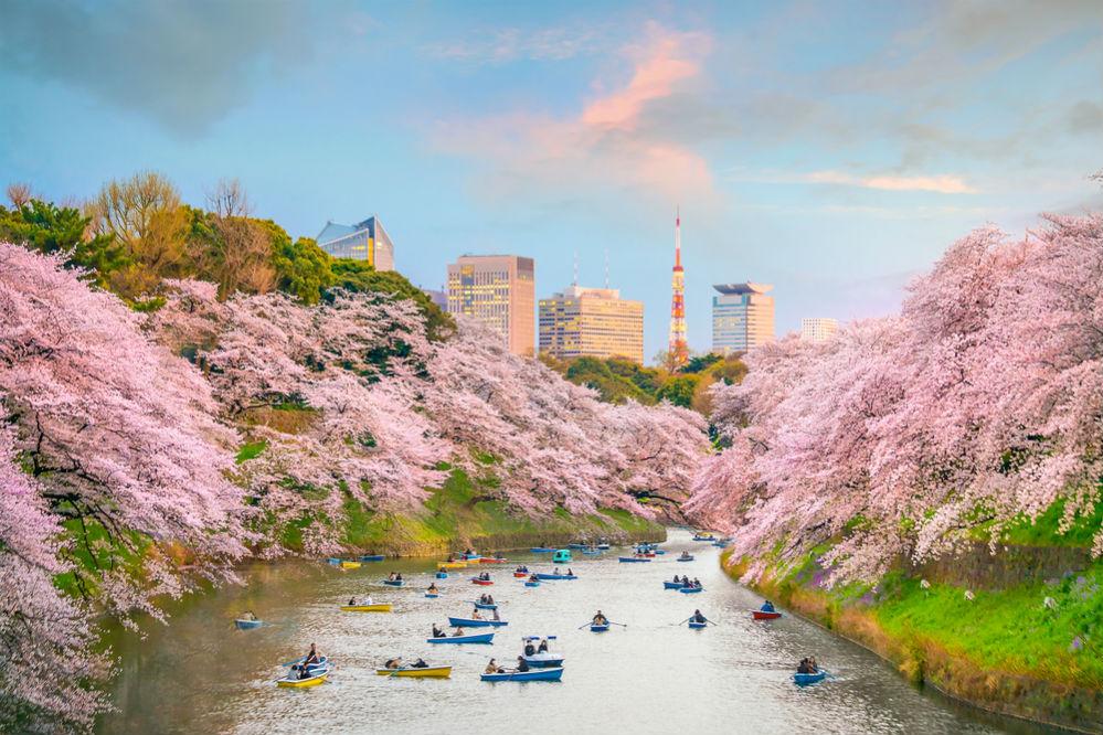 Фото: Токио