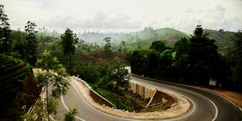 Фото: Дорога на Шри-Ланке
