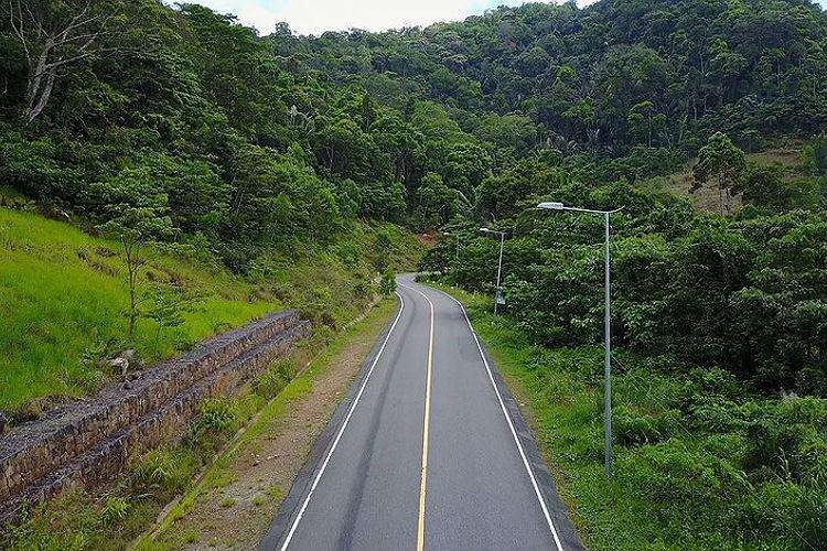 Фото: Дорога на вершину горы