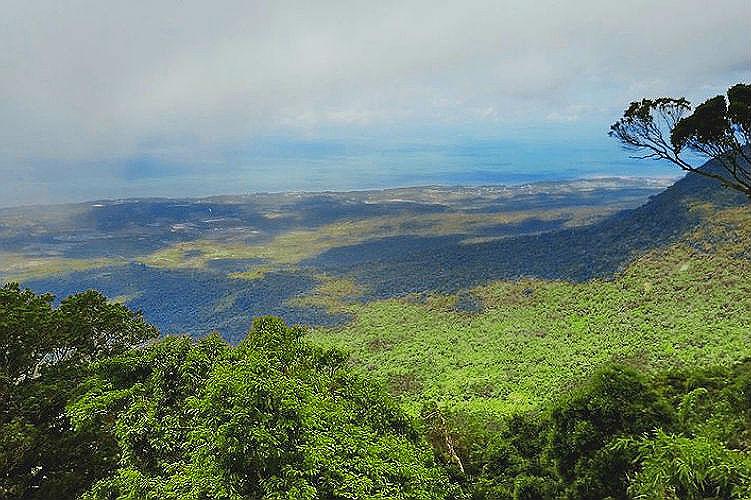 Фото: Вид с горы