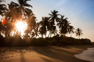 Фото: Пляж на Шри-Ланке