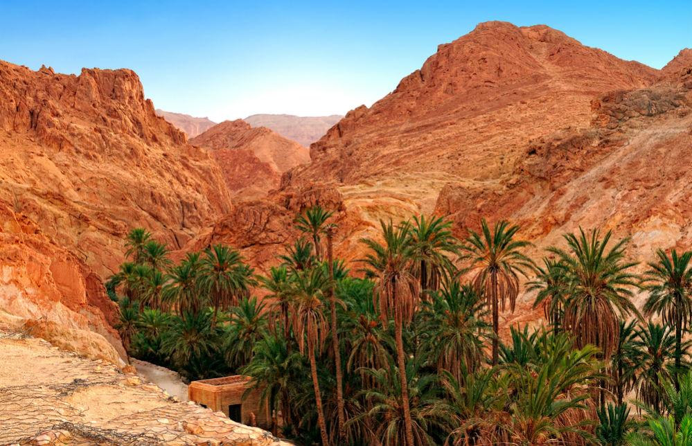 Фото: Сахара