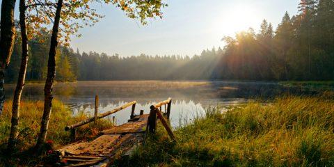 Фото: Природный заповедник