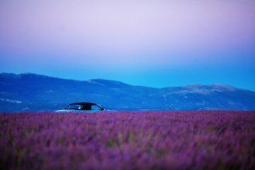 Фото: Машина в поле