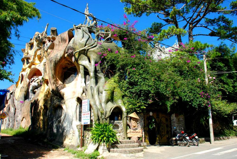 Фото: Отель в дереве, Вьетнам