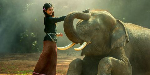 Фото: Таиланд