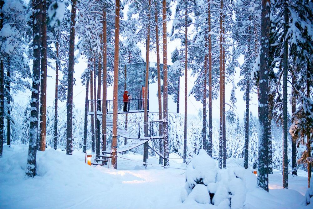 Фото: Tree Hotel