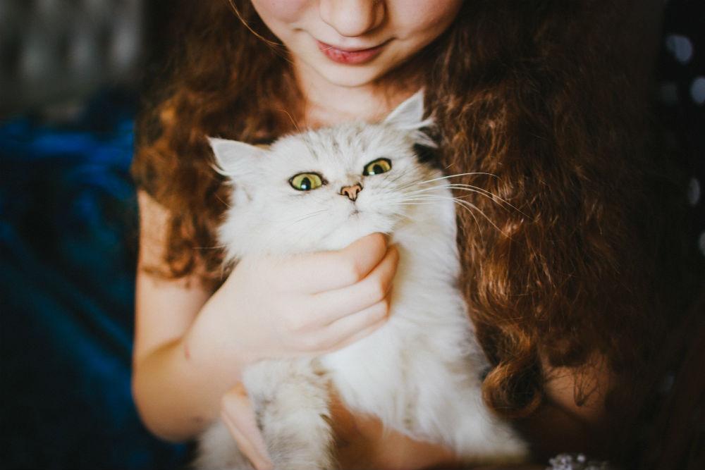 Фото: Девочка с кошкой