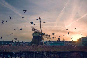 Фото: Европа