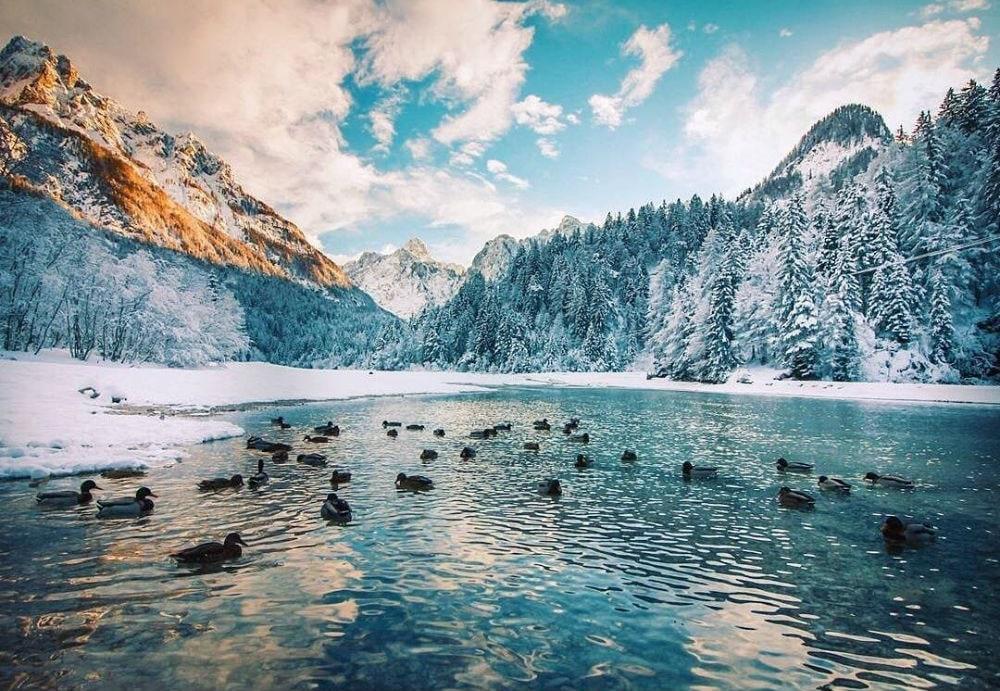 Фото: Горнолыжный курорт Краньска Гора