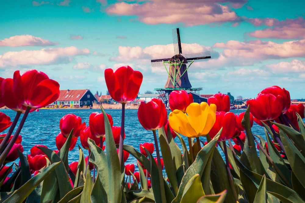 Фото: Весна в Европе