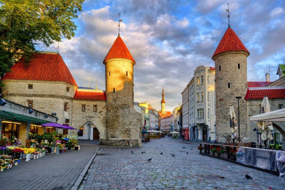 Фото: Старый город Таллина