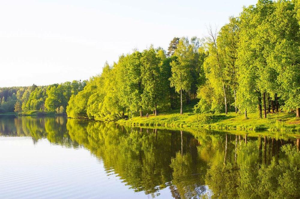 Фото: Скитские пруды