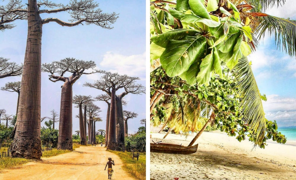Фото: Мадагаскар