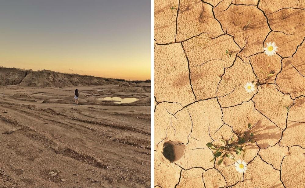 Фото: Сычевские песчаные дюны