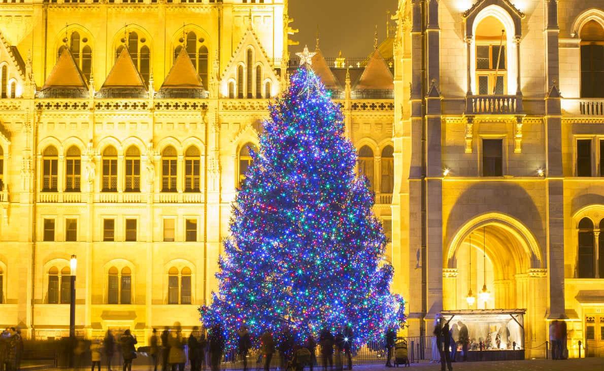 Фото: Ёлка в Будапеште