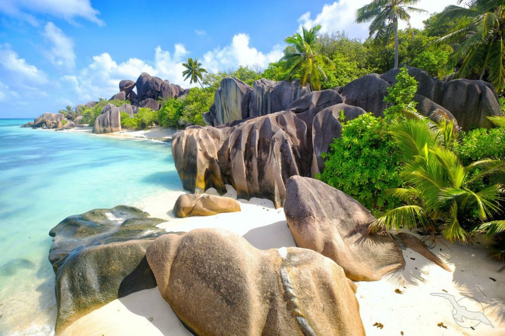 Фото: Сейшельские острова