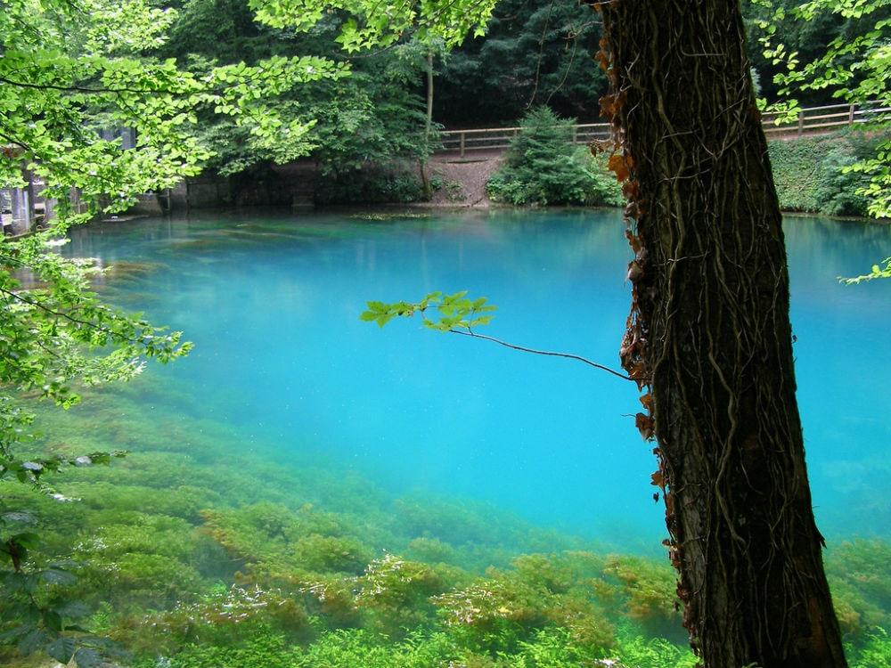 Фото: Озеро Блаутопф германия 10 завораживающих мест в Германии, о которых мало кто знает blautopf