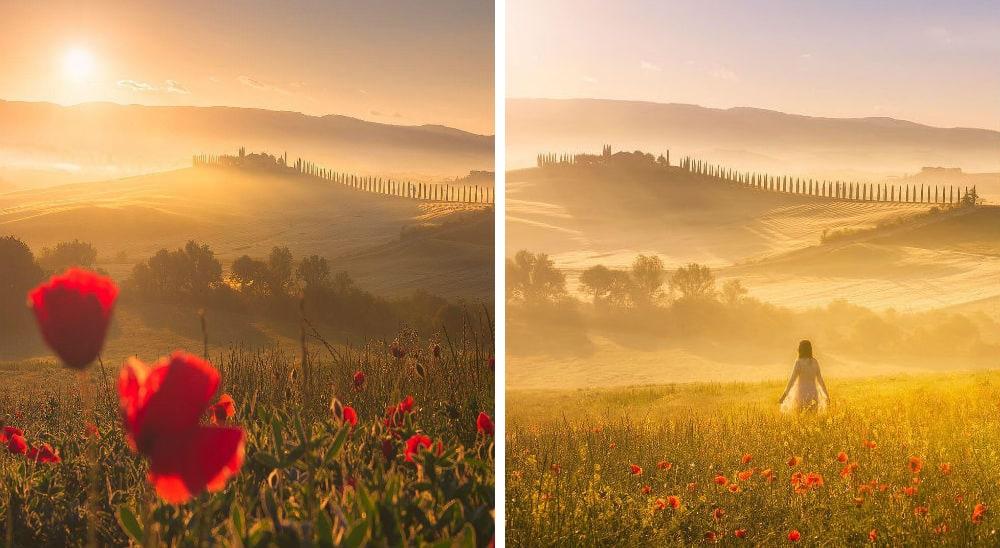 Фото: Тоскана  Расцветающая Европа: куда поехать весной tuscany
