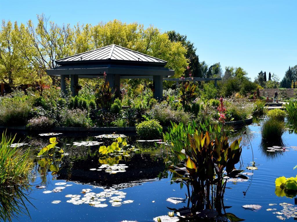 Фото: Ботанические сады Денвера
