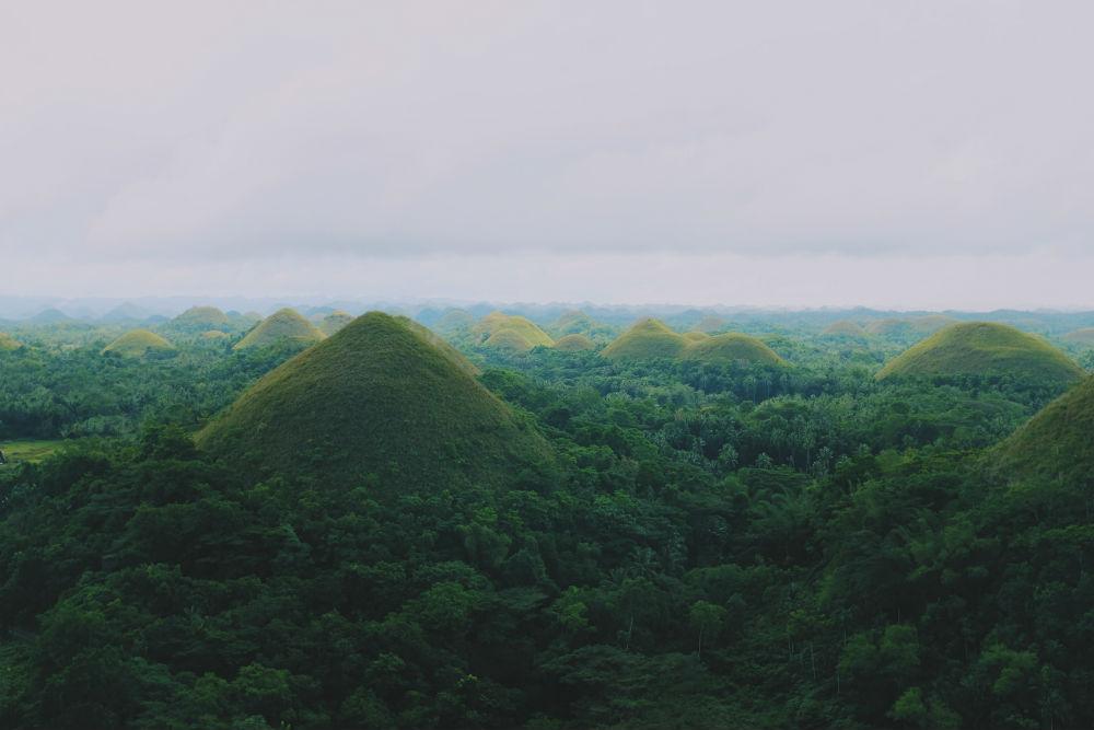 Фото: Шоколадные холмы