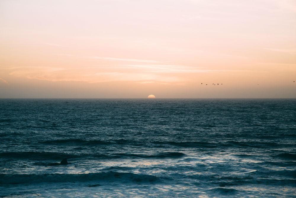Фото: Океан