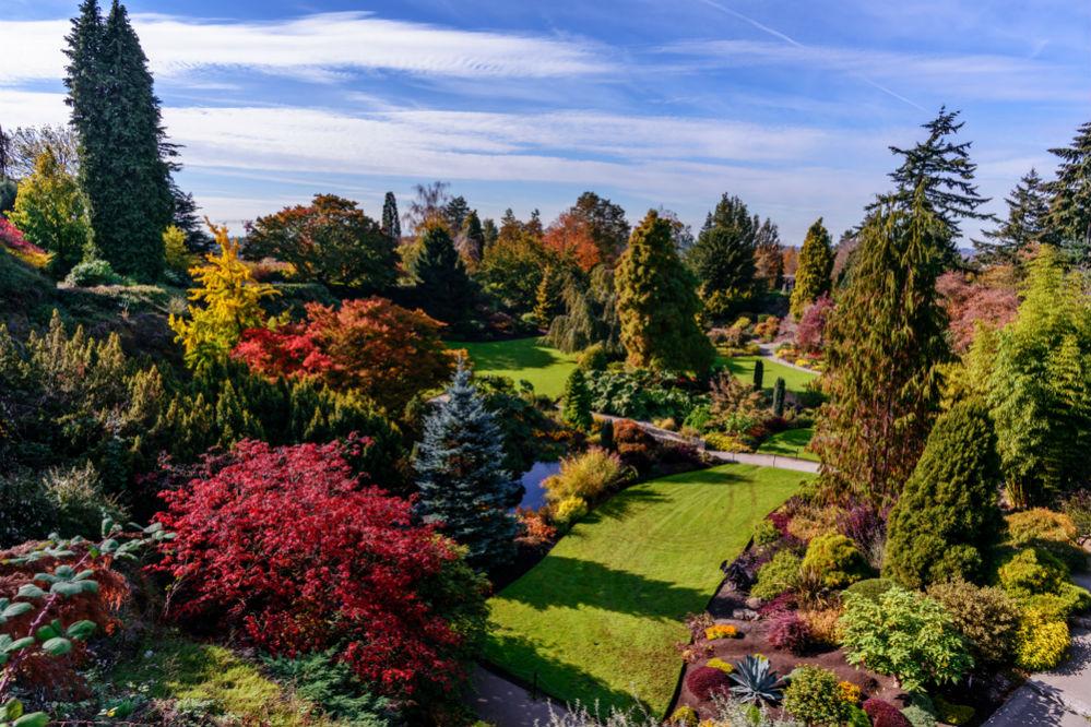 Фото: Парк Королевы Елизаветы