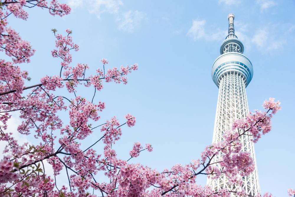 Фото: Смотровая площадка Tokyo Skytree