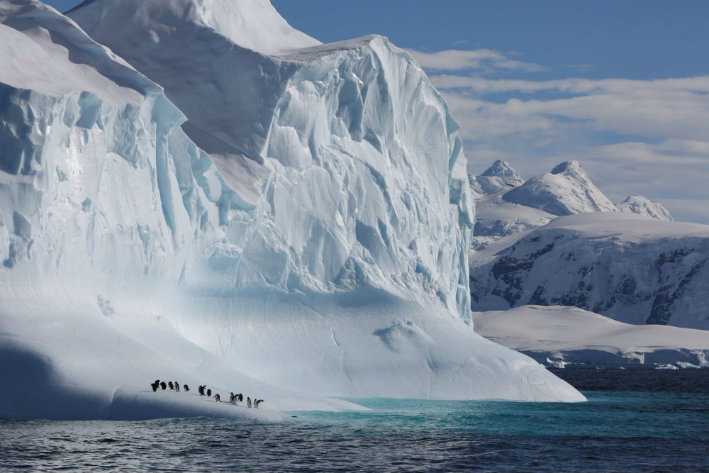 Фото: Антарктида