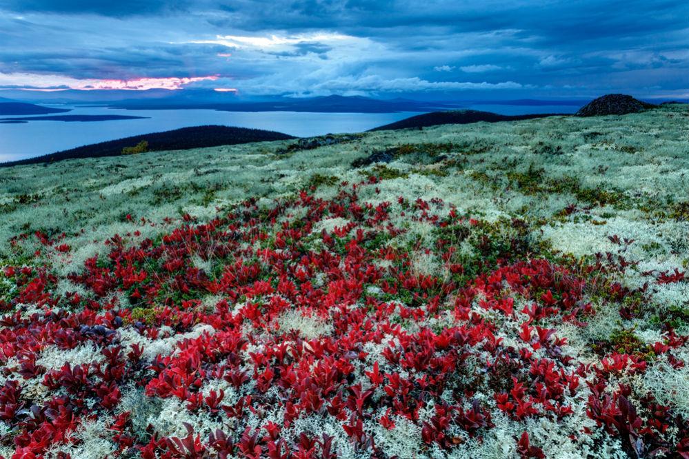 Фото: Кольский полуостров