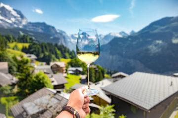 Фото: Вино