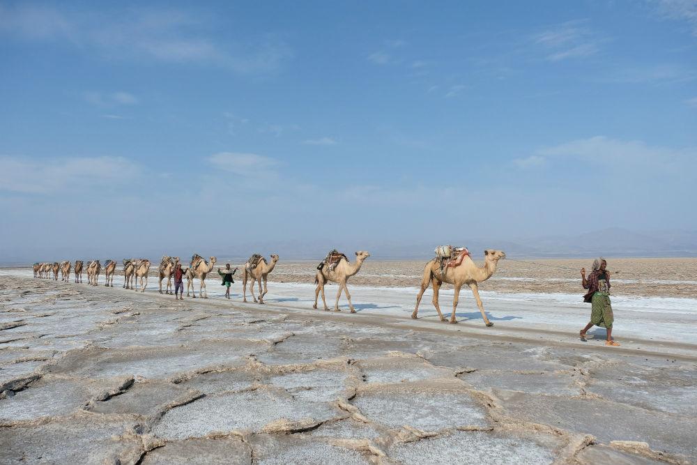Фото: Эфиопия